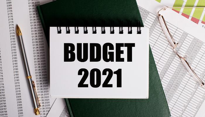 Budget 2021 - India Employer Forum