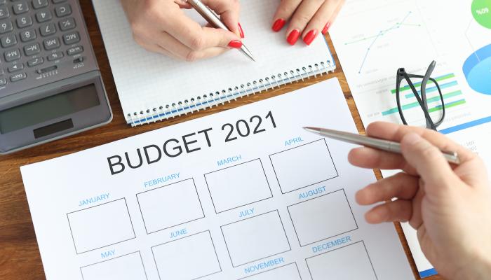 Union Budget 2021 - India Employer Forum